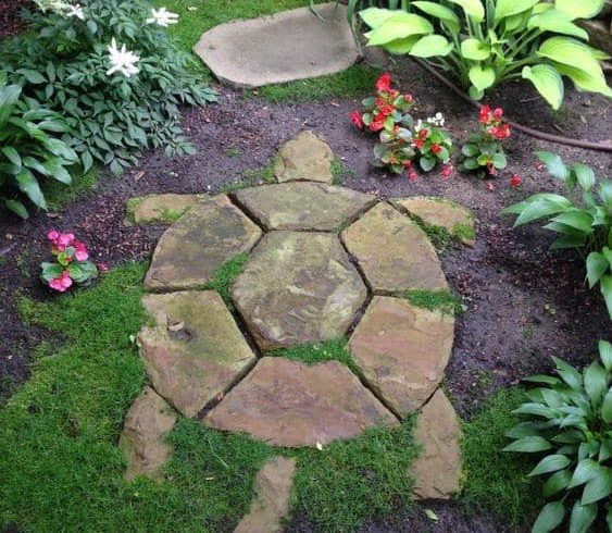 Turtle-shaped stepping stones