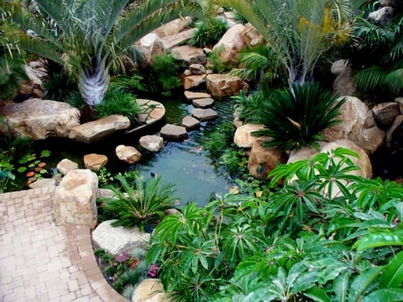 Tropical garden along with water bodies, creating a unique and fresh look for your outdoor space.