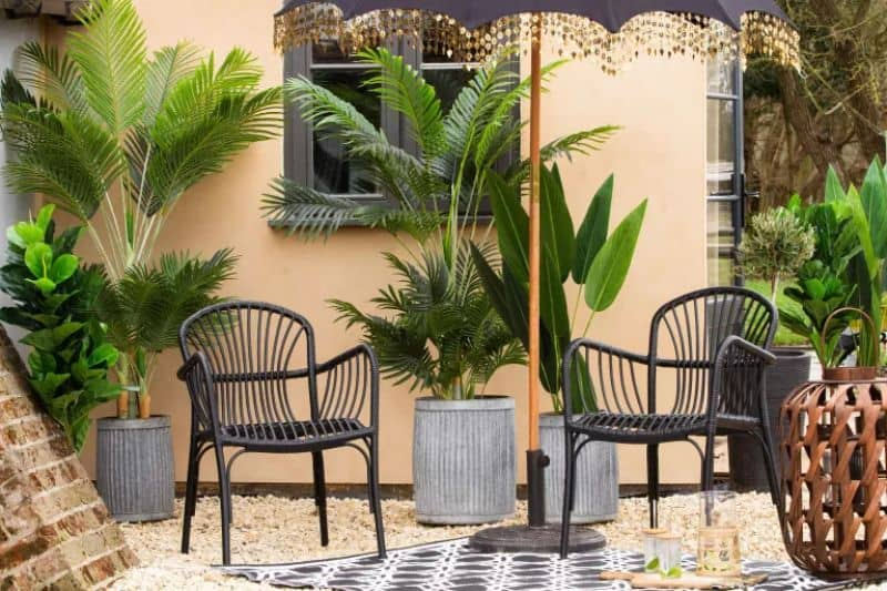 A small patio embracing the tropical vibe with some potted palms