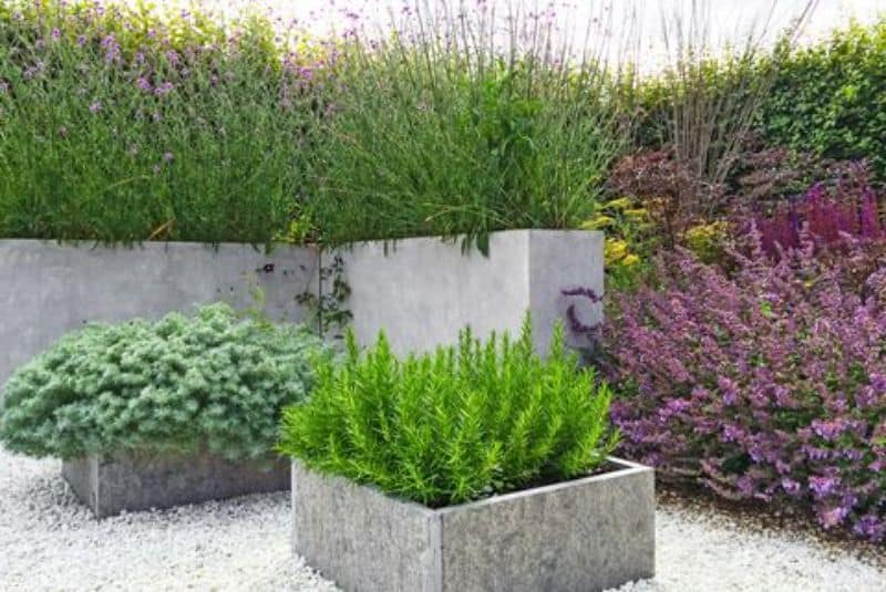Concrete pots that can transform a plain outdoor space into a more modern looking one