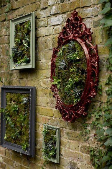 Picture frames in garden