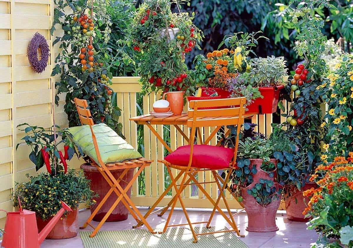 Small, colourful balcony garden
