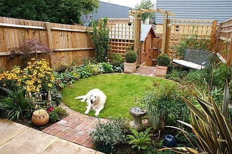 Grass island with a trellis that divides the garden into defined spaces with a dog on the lawn
