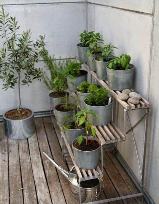 Herb garden on corner