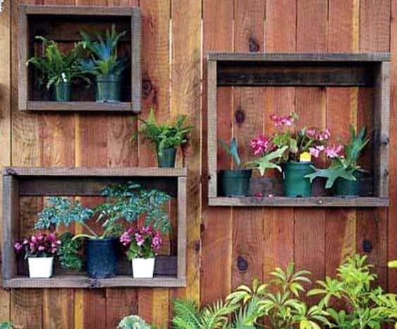Wood lined plant frames