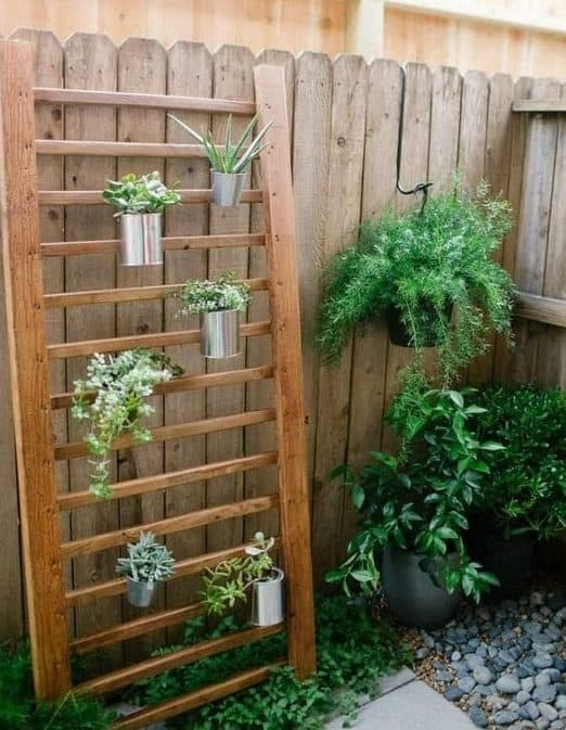 A mini vertical garden