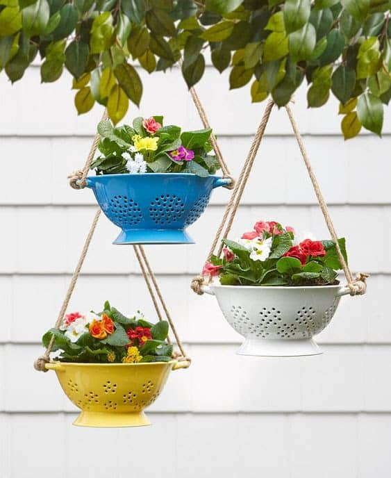 Hanging flowers with colourful pots