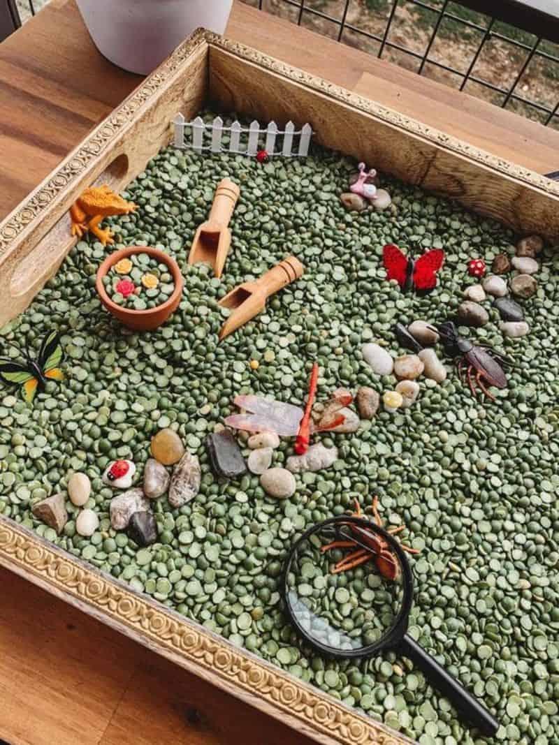 Miniature pebble garden