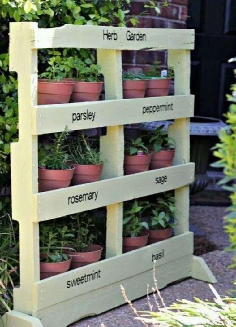 Herb garden in pallet