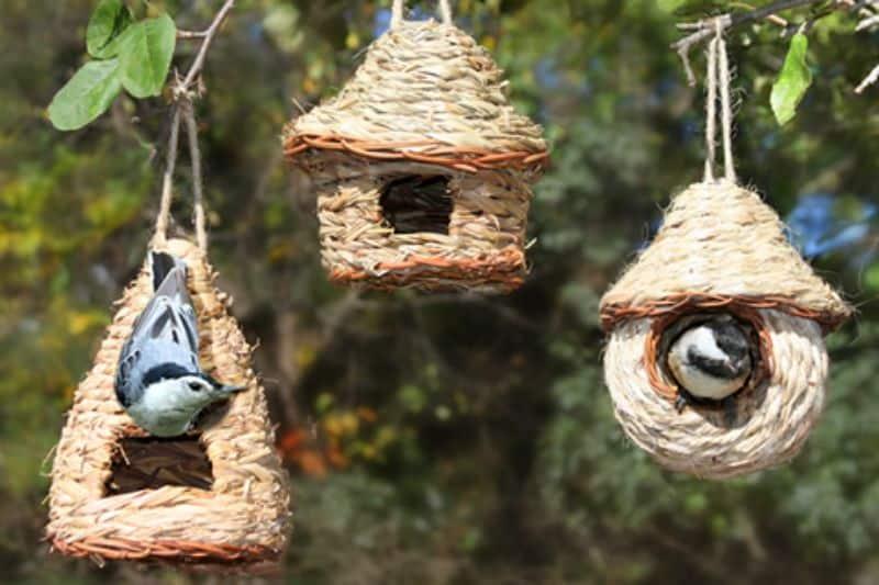 Nesting pockets on trees