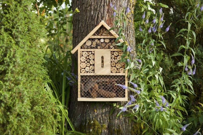 A mini bug hotel attached to a tree
