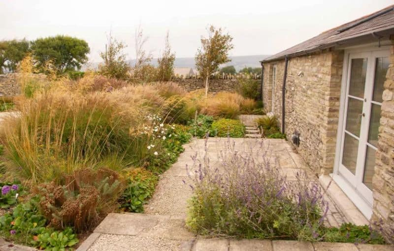 A billowing border filled with tall perennial blooms and ornamental grasses