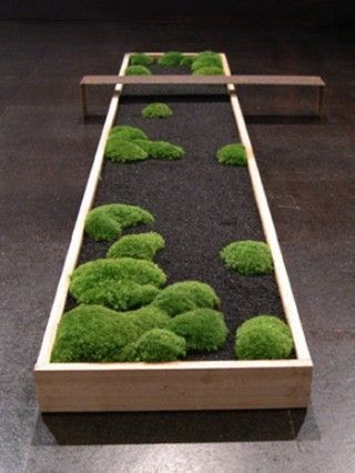Minimalist garden with bench
