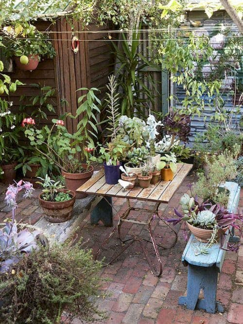 Cosy gardening patio with scattered plant pots, climbing vines, and a water feature