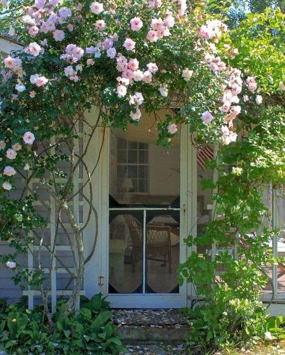 Garden door with trellis and flowers