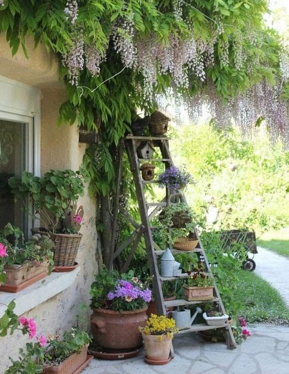 Old steps used as a vertical garden