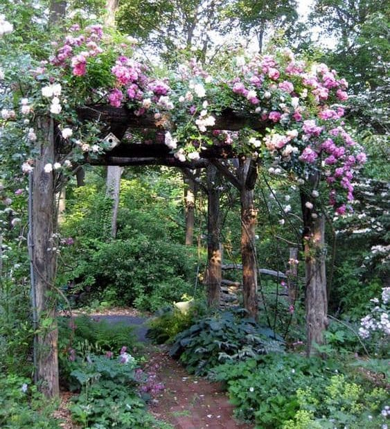 A simple, rustic wooden pergola decorated with colourful flowers
