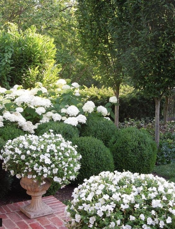 White and green flowers in a formal cottage garden