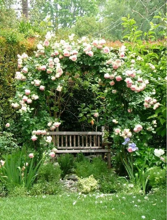 Bench with pretty flower shade
