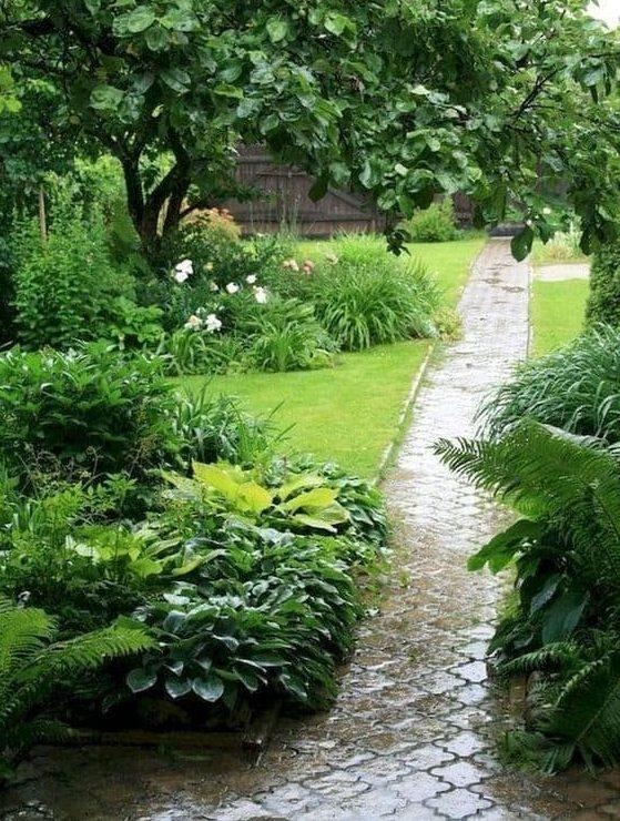 Backyard garden with long path
