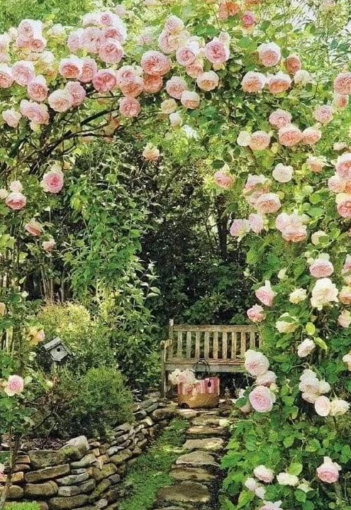 A bench under flowers in a beautiful cottage garden spot