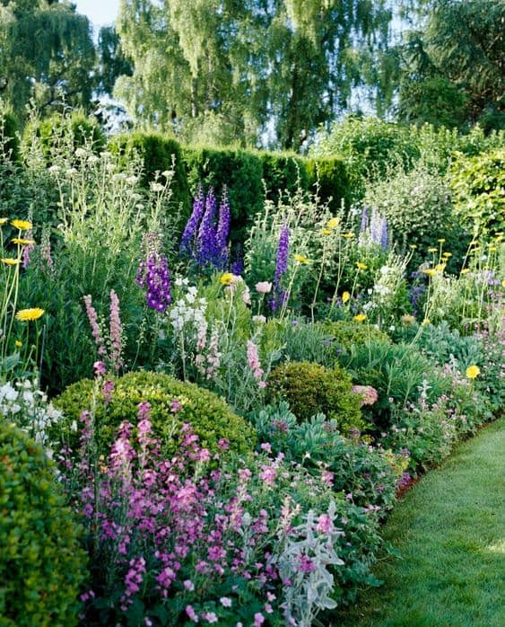 Colourful garden bed with a variety of coloured flowers and plants