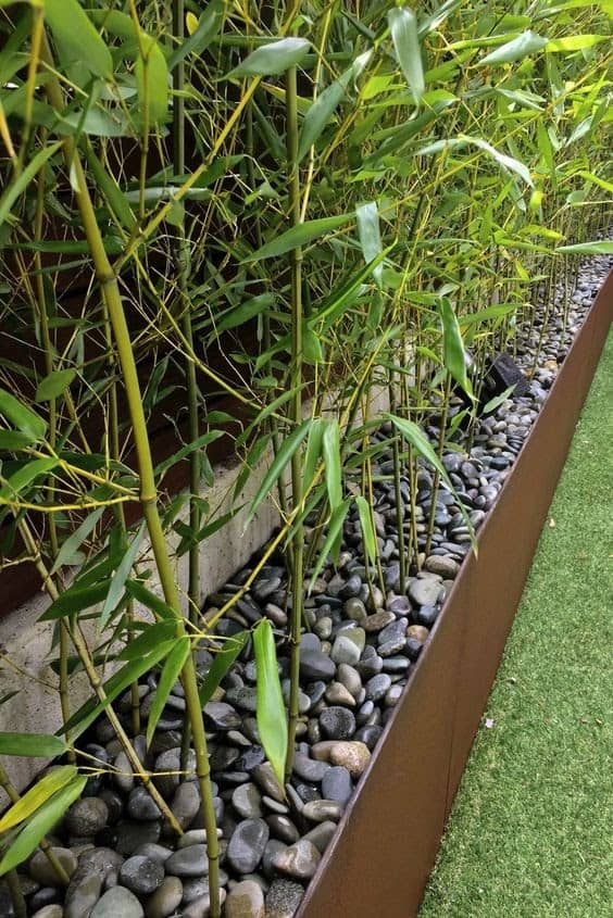 Bamboo and pebbles giving off a clean, contemporary look for planters