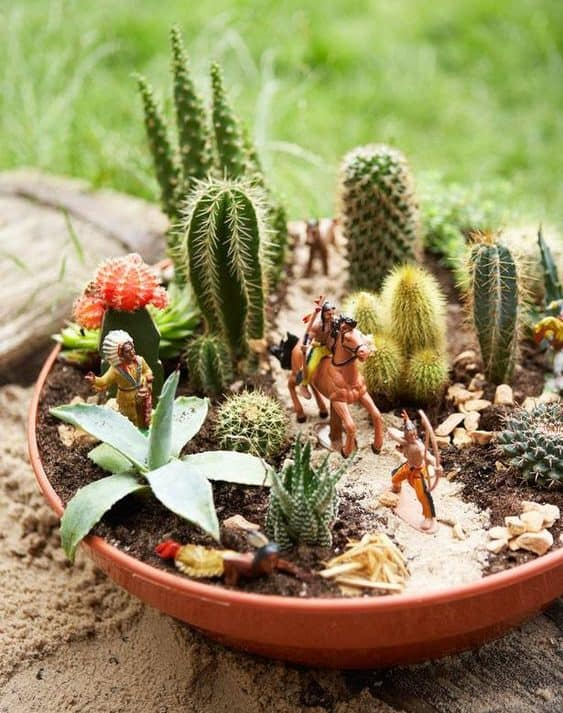 Miniature garden with some small cacti and pebbles