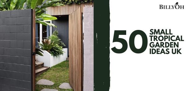50 Small Tropical Garden Ideas