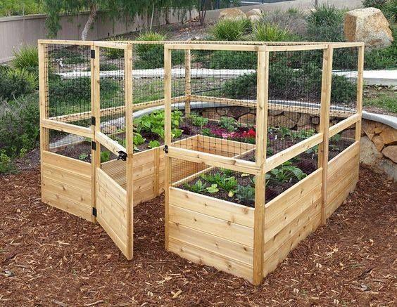 Enclosed vegetable garden safe from pests and pesky animal intruders