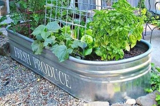 Tin bath style planter that adds a rustic charm to the garden