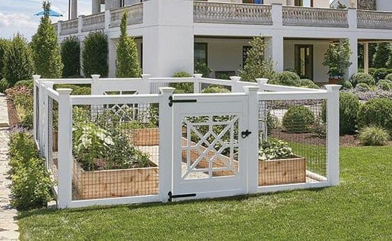 Tiny enclosed vegetable garden in white