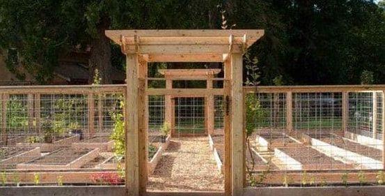 Big veggie garden with pergola