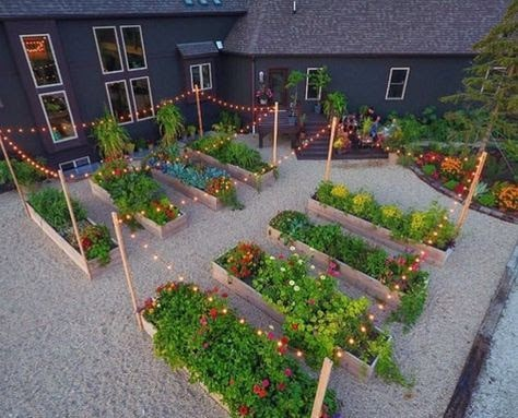 Vegetable garden with gravel and lights