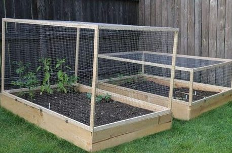 Removable garden bed cover