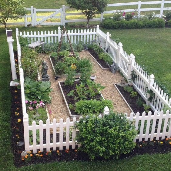 Vegetable garden with white fence