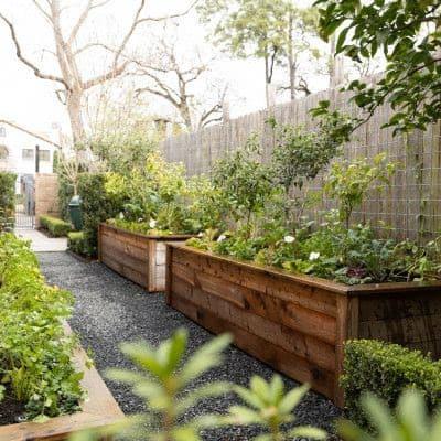 Vegetable garden in a narrow backyard