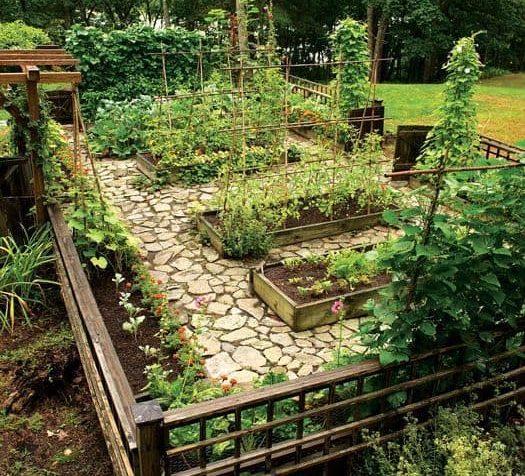 Fenced vegetable growing area