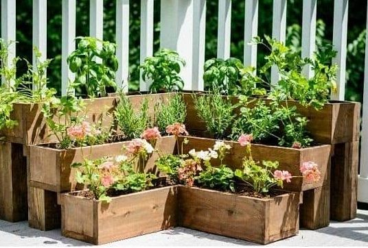 DIY tiered herb garden made from pallets