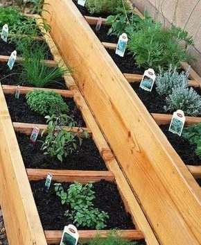 Tiered herb garden container with separate sections
