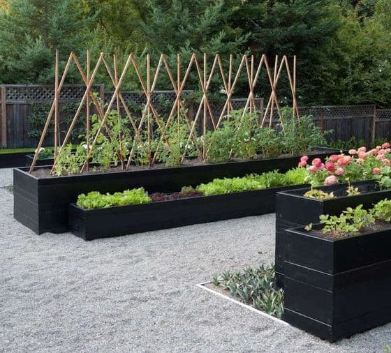Modern veggie garden beds with gravel