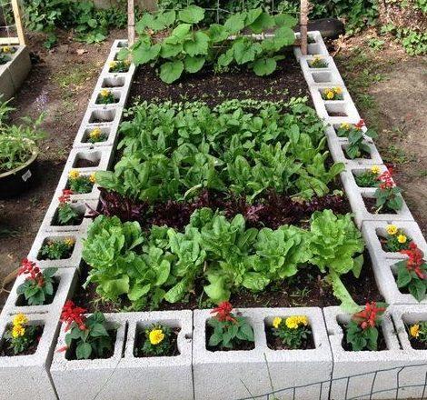 Breeze blocks flower and herb garden