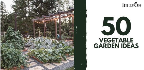 50 Vegetable Garden Ideas