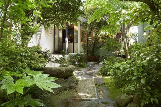 A Chinese-inspired garden filled with a variety of plants with stones