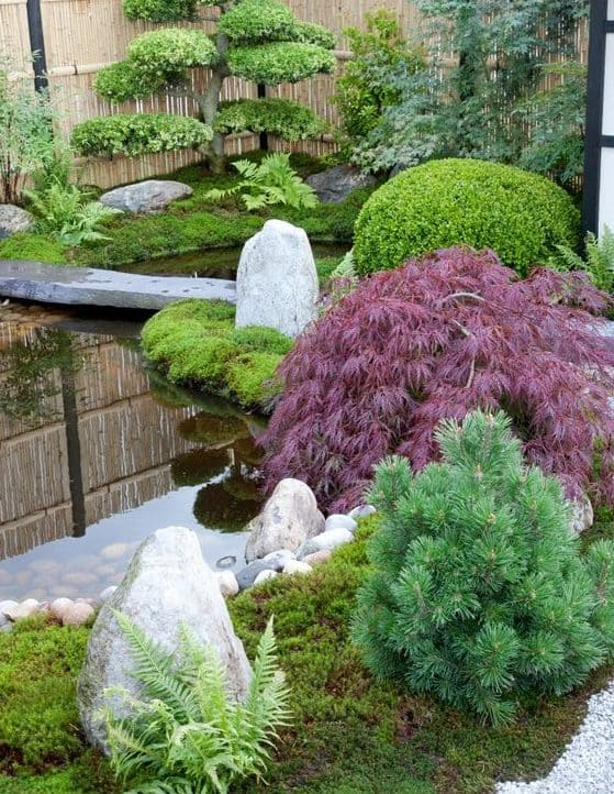 Perfectly trimmed plants in a Zen-style outdoor space