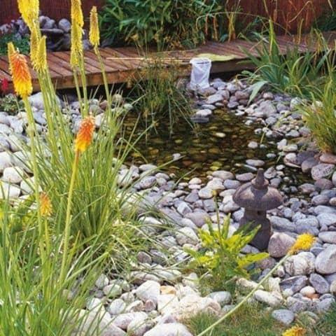 Tiny pebble pond