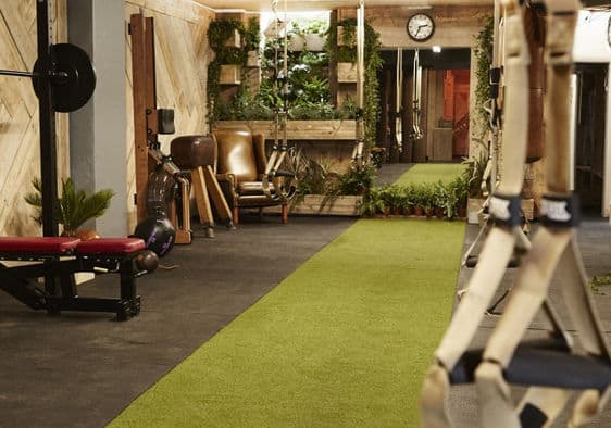 A customised garden gym filled with plants