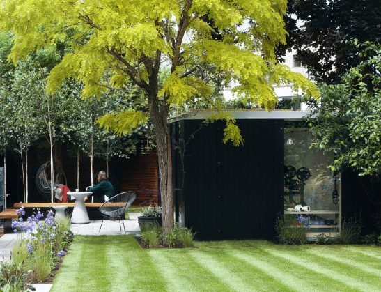 A black home gym at the corner of the garden surrounded by trees