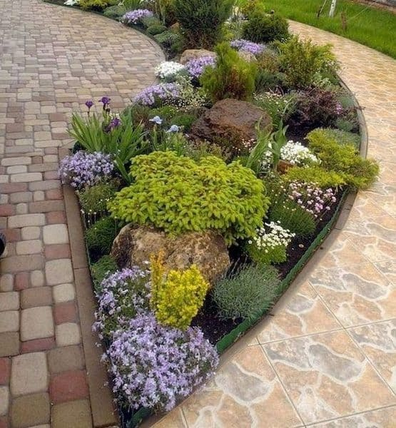 A backyard with a colourful garden bed