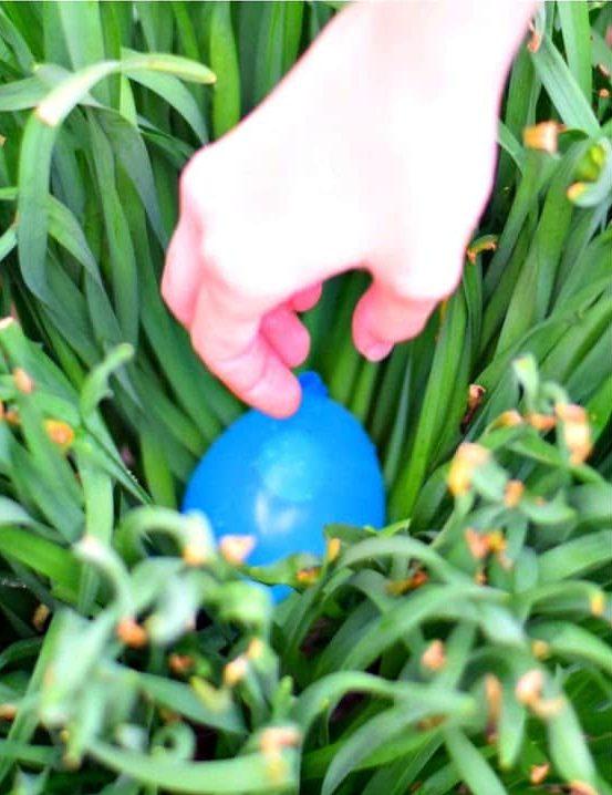 A blue balloon hidden in grass